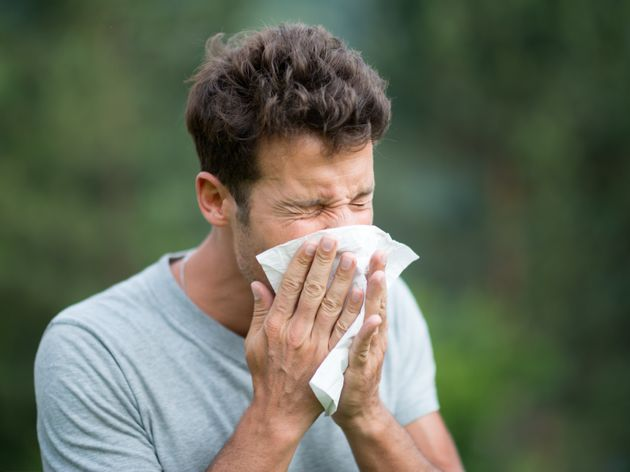 Hay Fever Getting You Down? Here Are 22 Doctor-Approved Tips To Keep Symptoms At