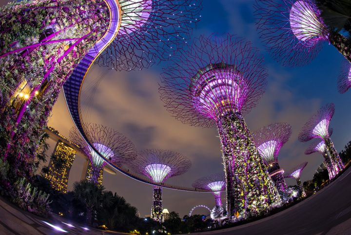 Larry Summers says Singapore's sharing the wealth method wouldn't transfer over well to America.