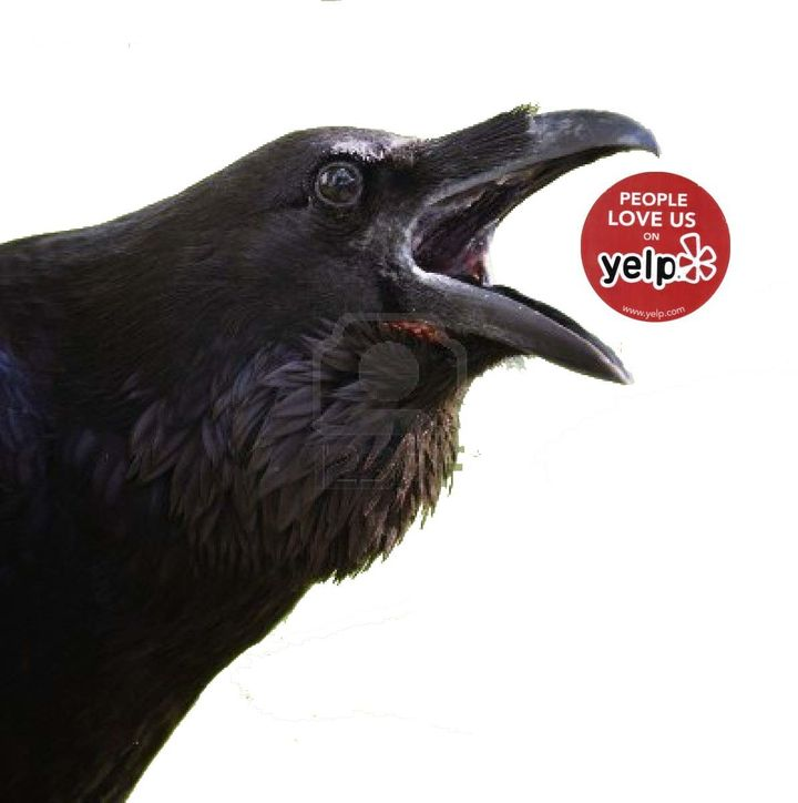 "Quoth the Maven: ""Yelp No More!"""