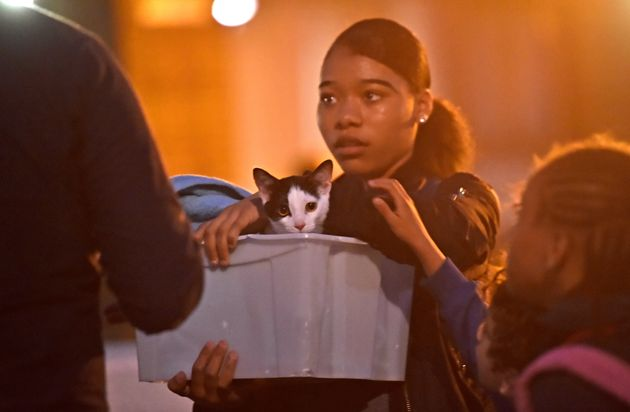 A resident and her cat during evacuations on Friday