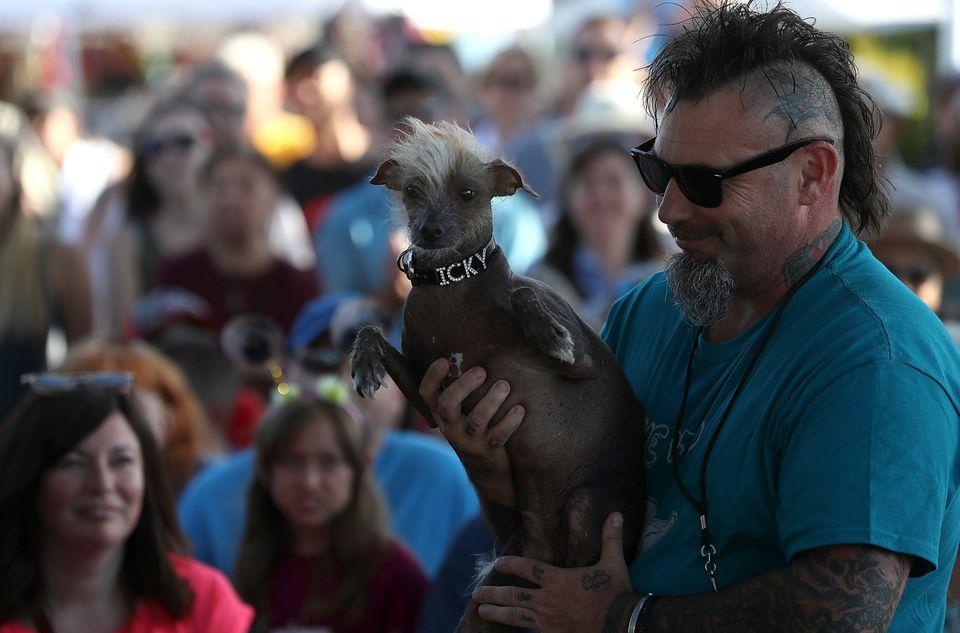 Jon Adler of Davis, California, holds Icky, his mixed breed