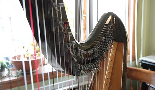 <strong>The harp has 40 strings.</strong>