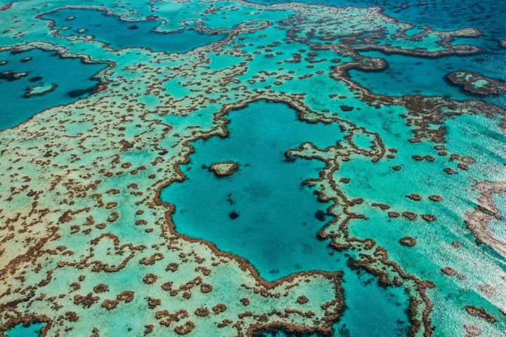 Vast swaths of Australia'sGreat Barrier Reef have died in recent years due to increased ocean temperatures linked to cl