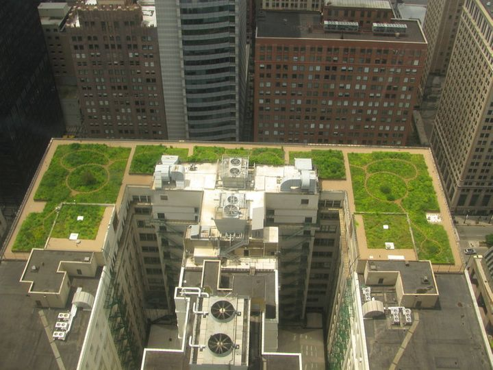 In Chicago, the City Hall's green roof helps keep things cool.