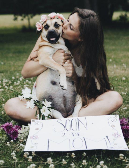 Les photos de maternité de cette chienne sont meilleures que les