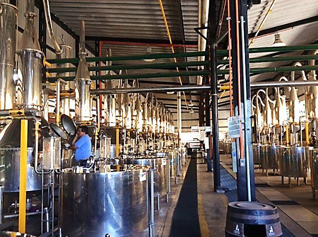 Stills at the Herradura distillery