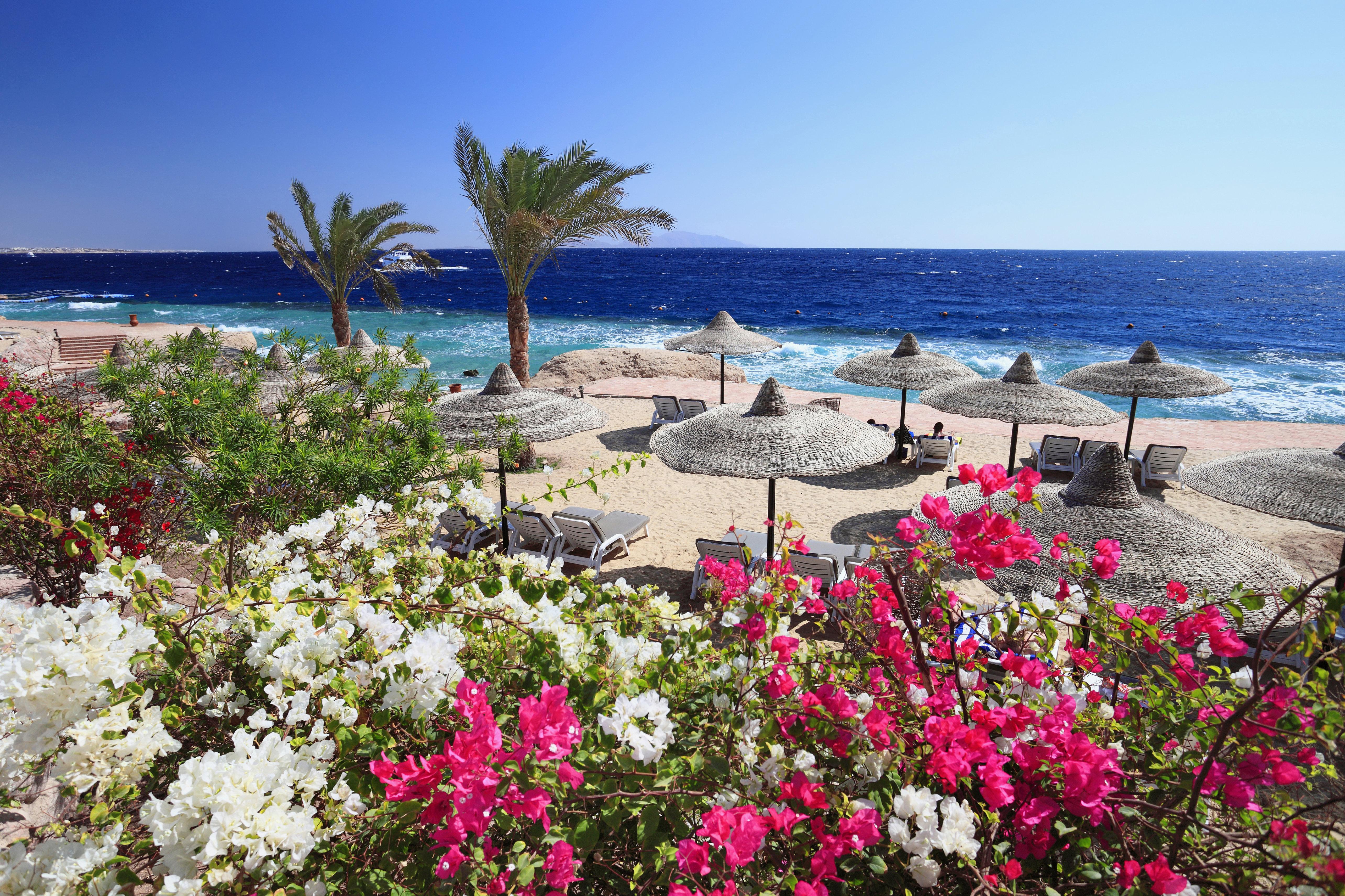 TheRenaissance Golden View Beach Resort in Sharm el Sheikh.