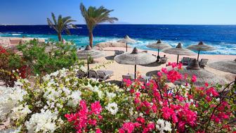 Beach at Renaissance Golden View Beach Resort, Om El Seid Hill