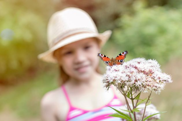 6 Ways To Attract Nature Into Your Outdoor Space (No Matter How
