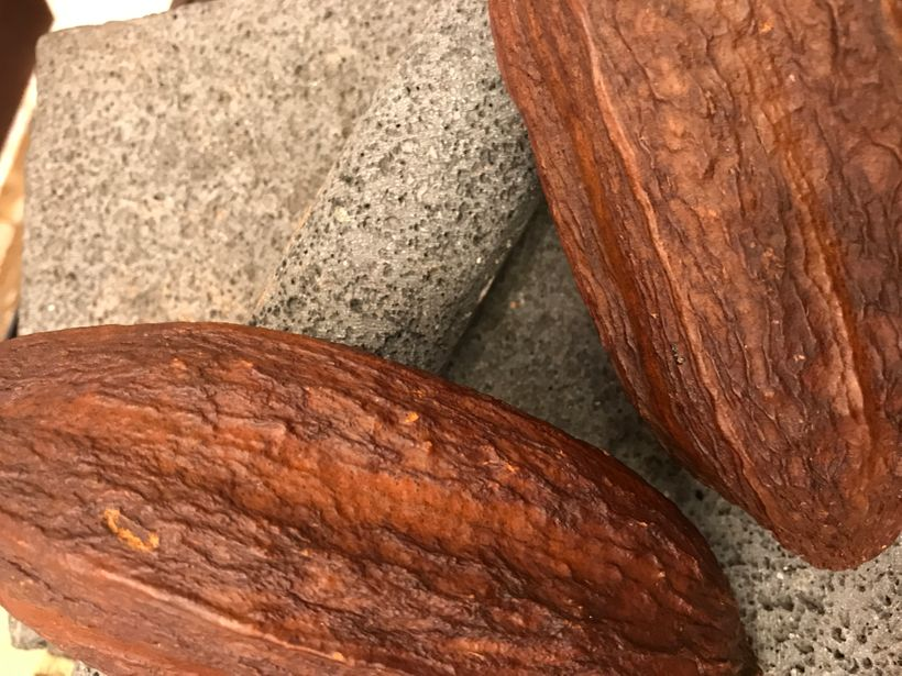 Dried cocoa pods on a chocolate stone