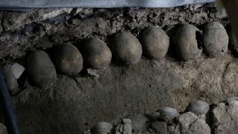 Skulls are seen at a site where more than 650 skulls caked in lime and thousands of fragments were found in the cylindrical edifice near Templo Mayor, one of the main temples in the Aztec capital Tenochtitlan, which later became Mexico City, Mexico June 30, 2017. Picture taken June 30, 2017. REUTERS/Henry Romero