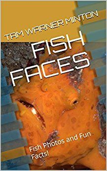 """Also available as an ebook on <a rel=""""nofollow"""" href=""""https://www.amazon.com/FISH-FACES-Photos-Facts-Friends-ebook/dp/B071DT6"""