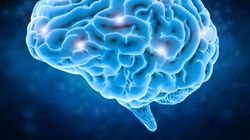 Brain Training Does Improve Memory And Reduce The Risk Of