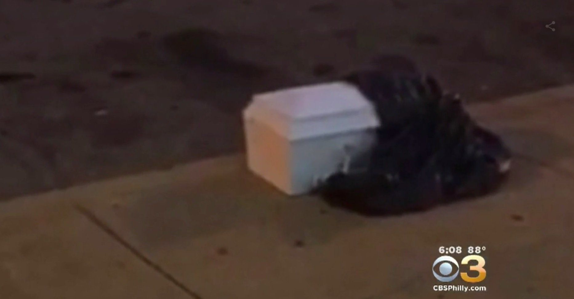 A child-size casket containing human remains was found on a Pennsylvania sidewalk Monday.