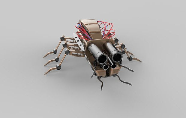 Robotic Insect