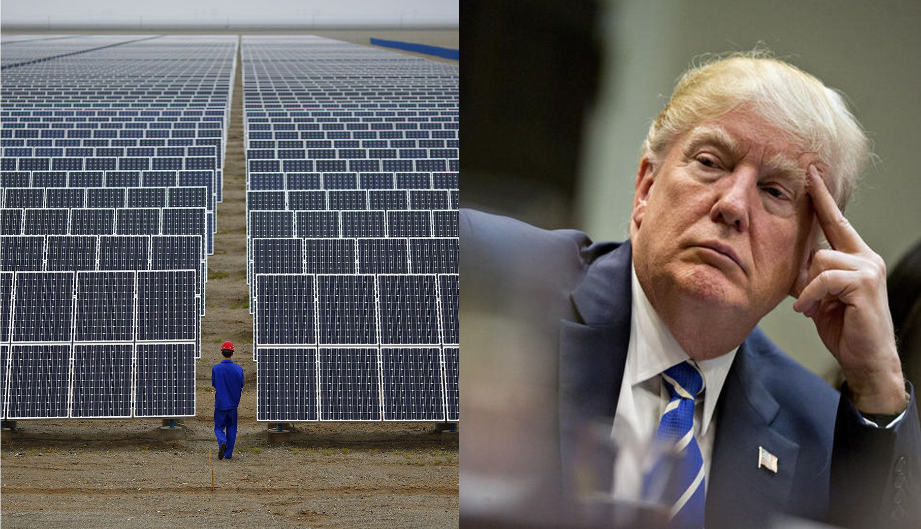 Trump has lost the solar war