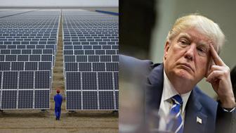 Trump has lost the solar war