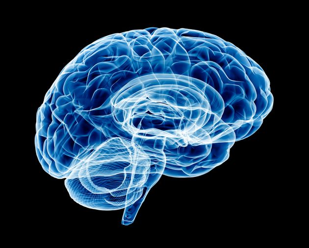 Scientists Believe A Psychopath's Brain Is Actually Wired Differently To