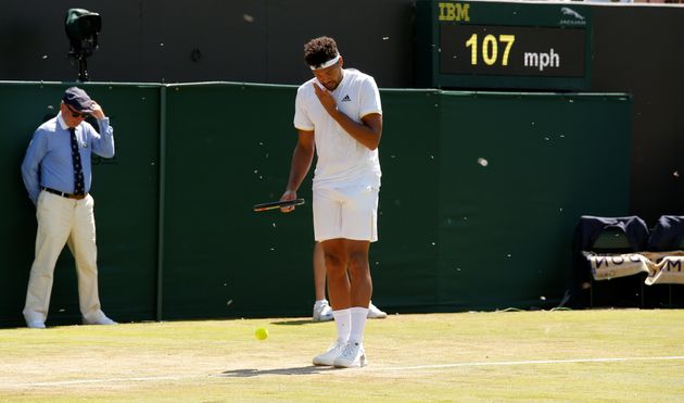 Flying ants surround France's Jo-Wilfried Tsonga during his second round match against Italy's...