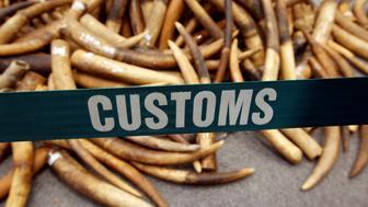 Ivory tusks seized by Hong Kong Customs are displayed at a news conference in Hong Kong, China July 6, 2017.   REUTERS/Bobby Yip