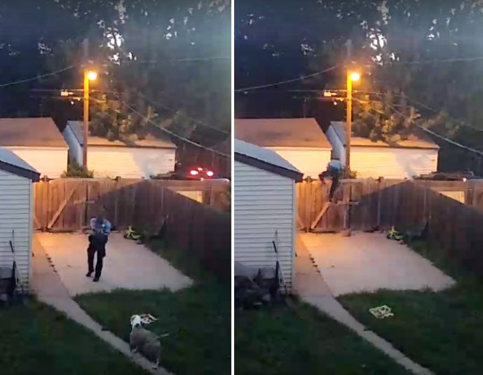 Surveillance images show a man identified as a Minneapolis police office shooting a dog that approached him in the backy
