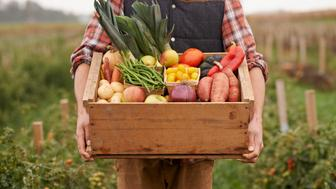 Cropped shot of a farmer carrying a crate full of fresh producehttp://195.154.178.81/DATA/i_collage/pu/shoots/806061.jpg