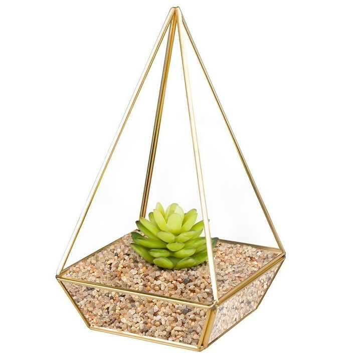 This glass tabletop terrarium is only $28.99 on Amazon during Prime Day.