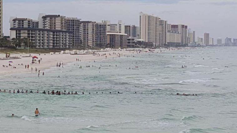 Several dozen people are seen forming a human chain to rescue swimmers that got caught in a rip current...