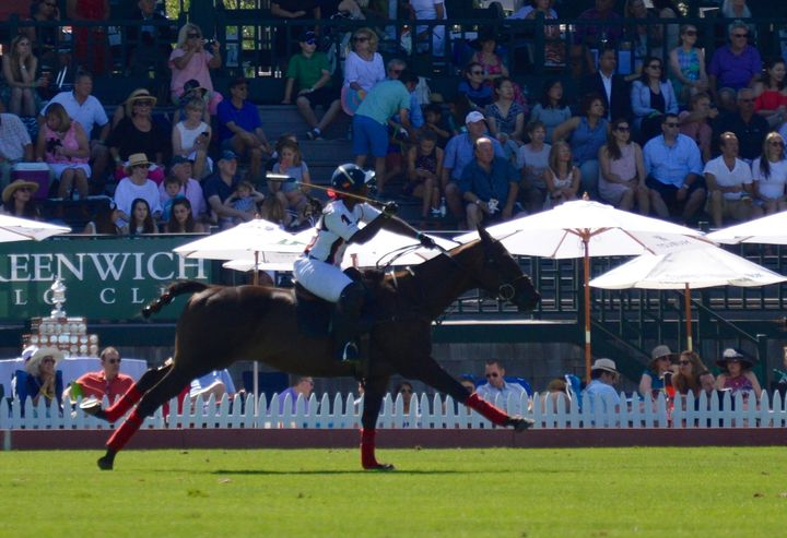 Shariah Harris justbecame the first black woman to play high-goal polo, the top tier of U.S. polo.