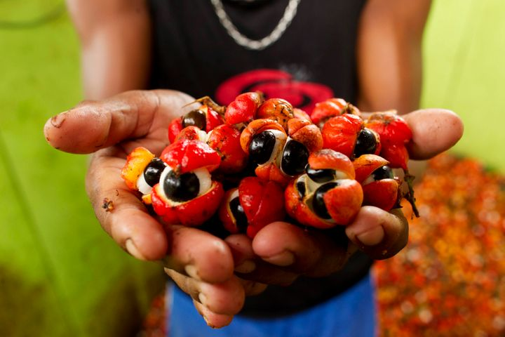 A handful of guarana berries, which many people have noted look a lot like eyes.