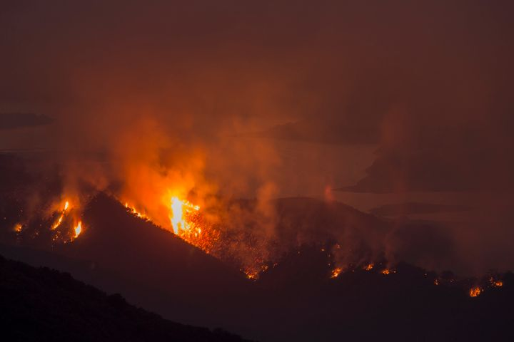 The Whittier fire burns next to Lake Cachuma on July 9 near Santa Barbara, California.