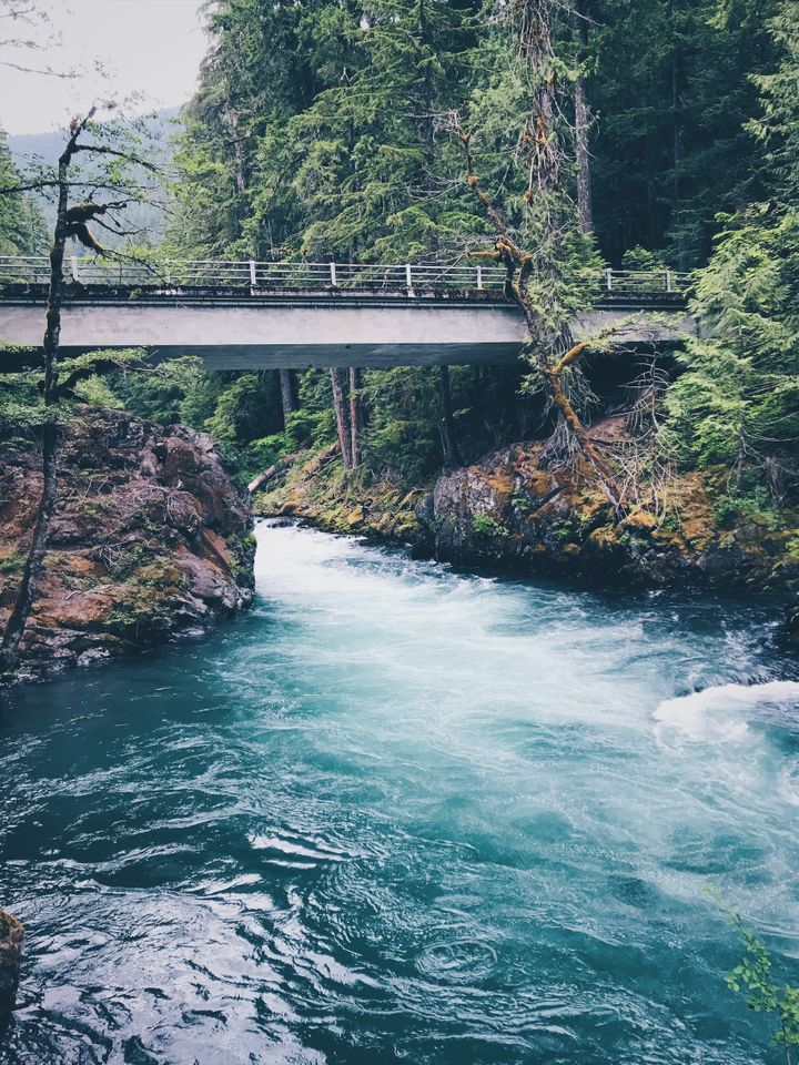 Stunning colors at the powerful Ohanapecosh River, Mount Rainier National Park