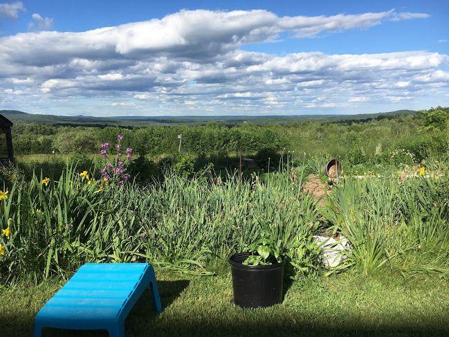 A Maine Landscape