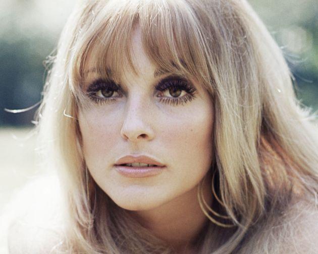 A 1965 headshot of Sharon