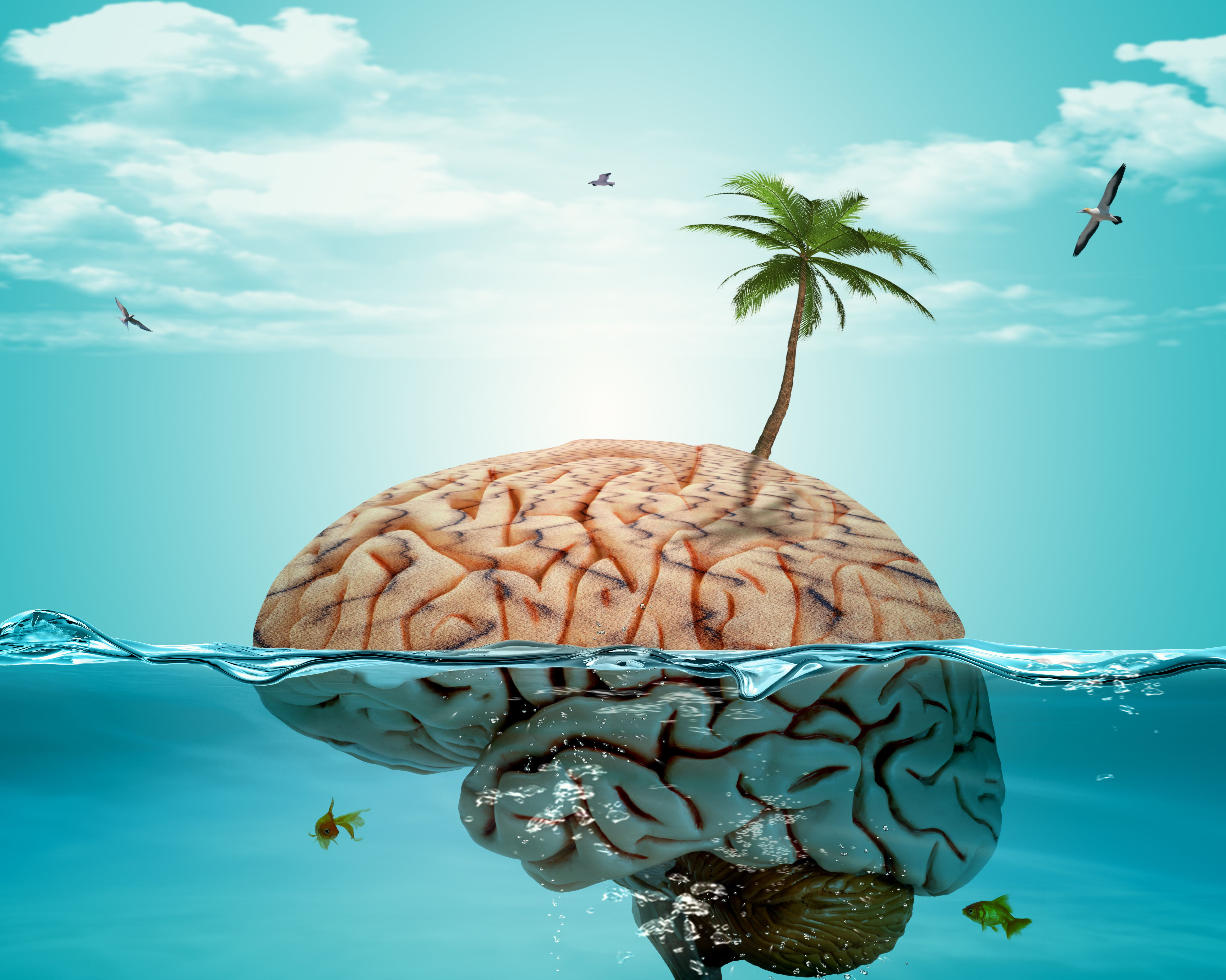 12 Tricks To Rest, Restore And Grow Your Brain When On