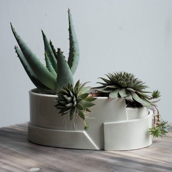 18 Cute And Unique Planters For Succulents Huffpost