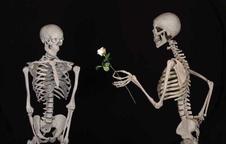 """skeleton handing rose to another skeleton (<a rel=""""nofollow"""" href=""""https://pixabay.com/en/skeletal-flower-congratulations-601"""