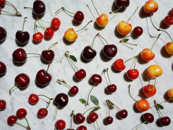 <p>Just a few of the sweet and sour cherry varieties out there.</p>