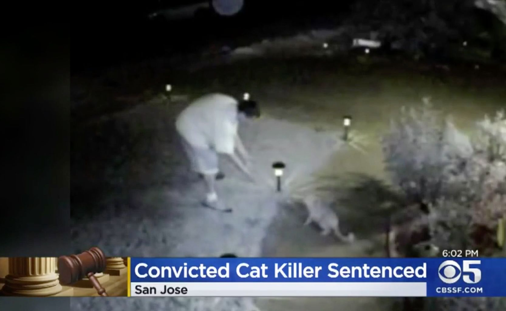 A still photo from security camera footage shows Farmer luring a cat outside of a home in 2015.