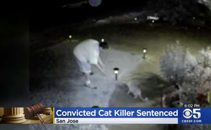 A still photo from security camera footage showsFarmer luring a cat outside of ahomein 2015.
