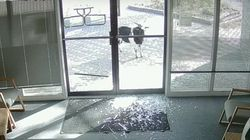 Glass-Smashing Goat Vandalises Business, Goes On The