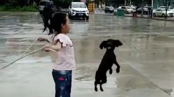 Little Girl And Her Dog Can Skip Together And It's Seriously