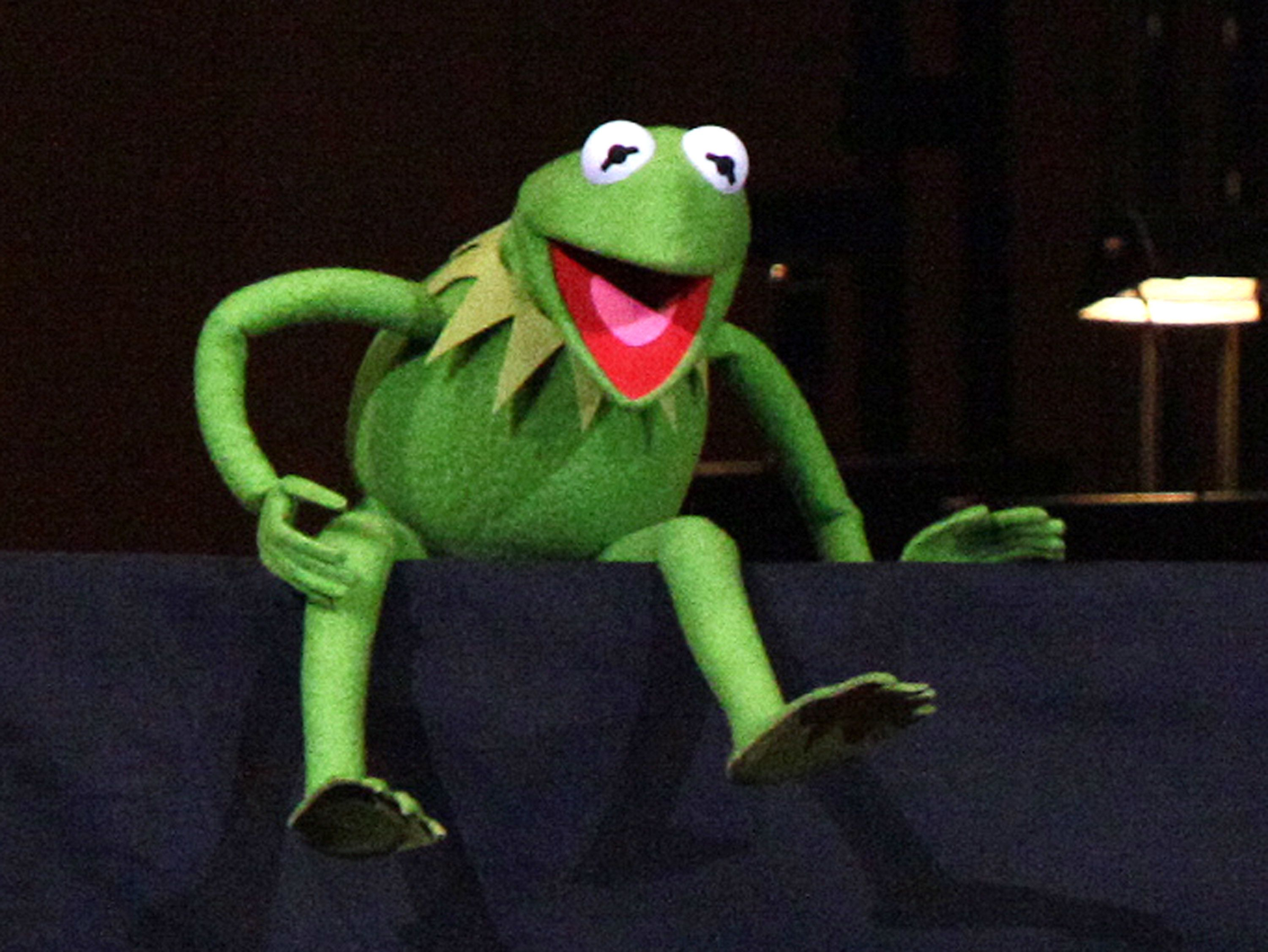 NEW YORK, NY - APRIL 14:  Kermit the Frog performs during the The New York Pops Present 'Jim Henson's Musical World' at Carnegie Hall on April 14, 2012 in New York City.  (Photo by Paul Zimmerman/Getty Images)