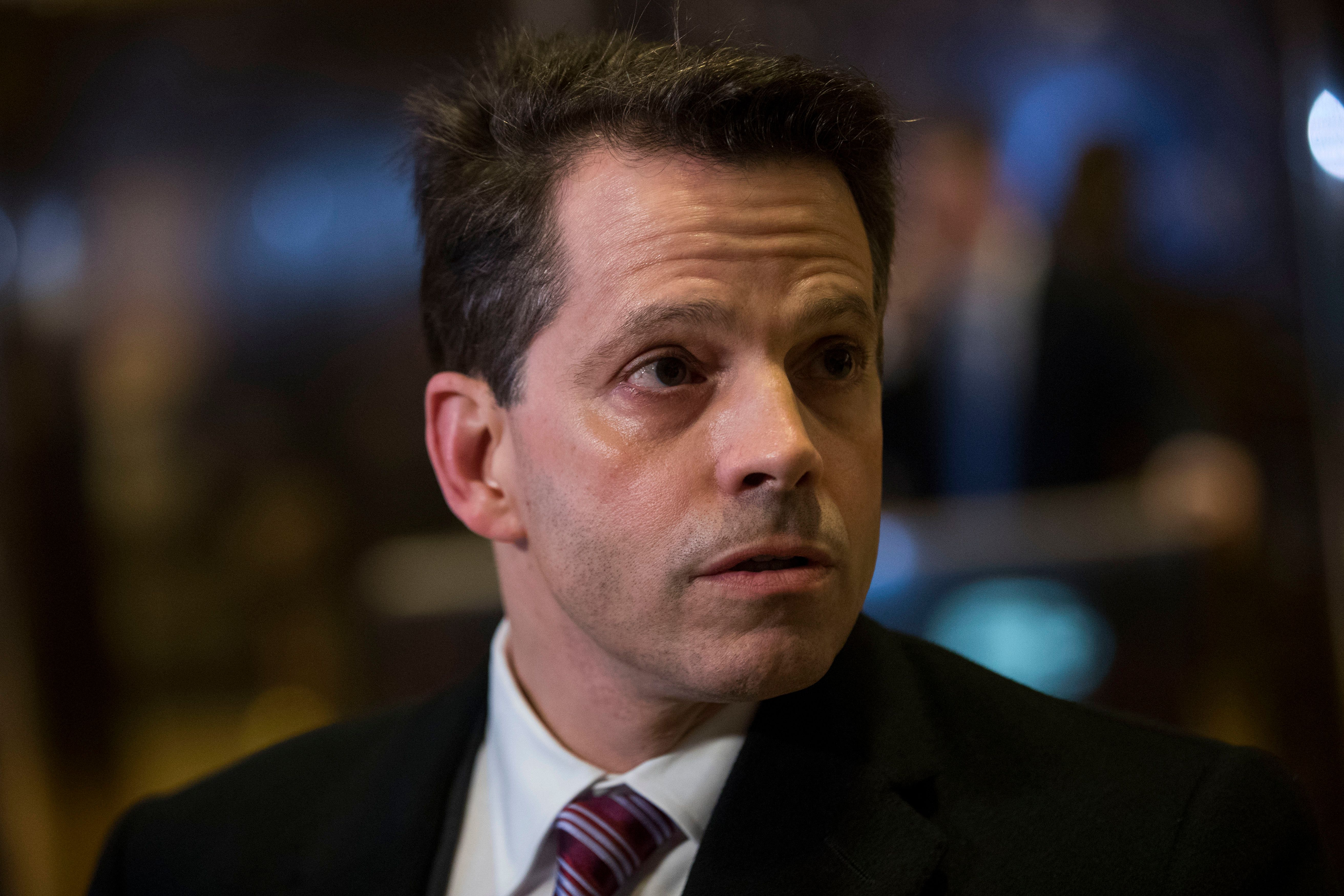 Is Anthony Scaramucci the new White House communications director?