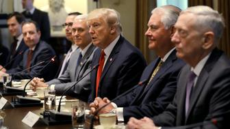 U.S. President Donald Trump speaks flanked by (L-R) Senior Advisor Jared Kushner, Chief of Staff Reince Priebus, Treasury Secretary Steven Mnuchin, Vice President Mike Pence and Secretary of State Rex Tillerson (2nd R) and Secretary of Defense James Mattis (C) as he meets with India's Prime Minister Narendra Modi in the Cabinet Room of the White House in Washington, U.S., June 26, 2017. REUTERS/Carlos Barria