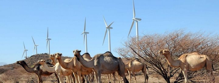 <em>Once operational, the wind farm will provide 310MW of reliable, low cost energy to Kenya's national grid (i.e. approx. 15
