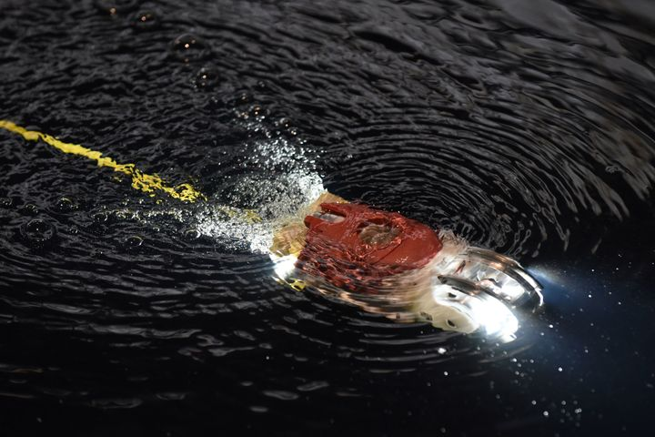 "Little Sunfish, a submersible robot developed by Toshiba and a team of researchers, was ""designed to <a href=""https://www.nyt"