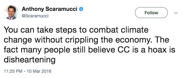 Best Deleted Tweets By Anthony Scaramucci, Donald Trump's New Communications