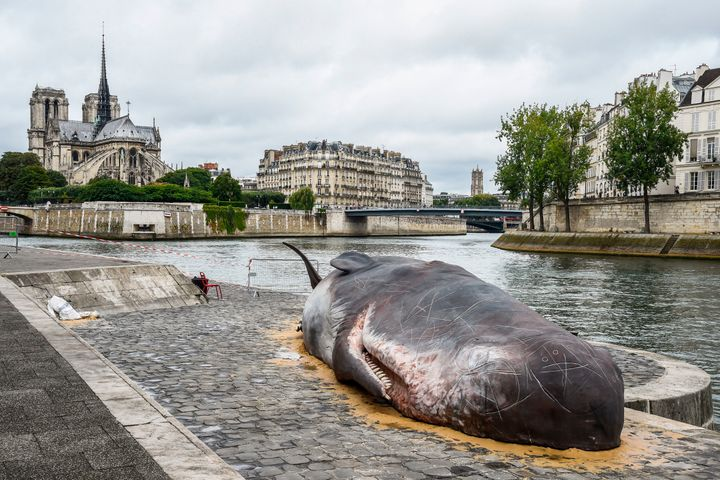 A sculpture of a life-size hyper-real sperm whale by Belgian Collective Captain Boomer is pictured in downtown Paris.
