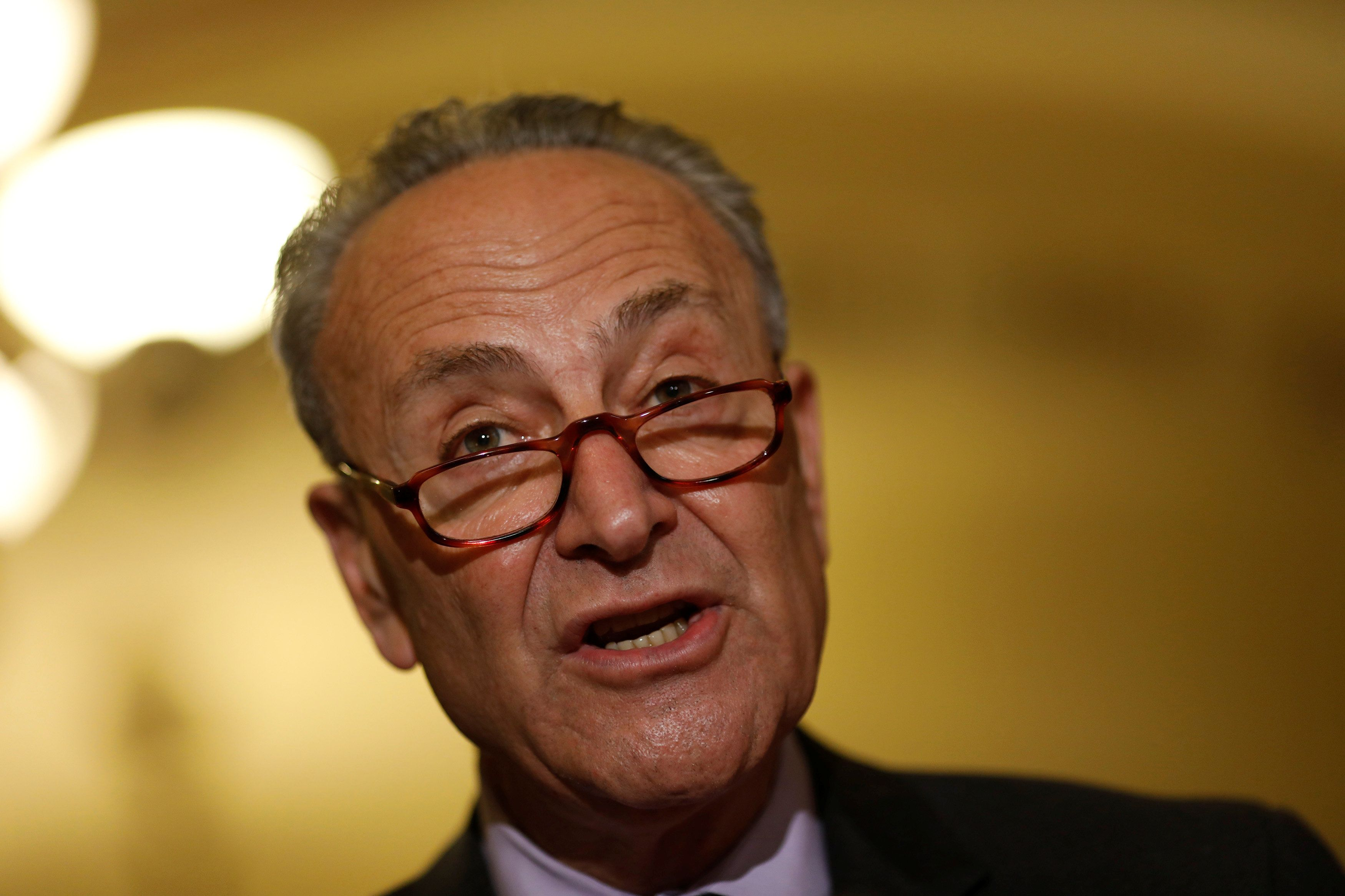 Senate Minority Leader Chuck Schumer (D-N.Y.) says antitrust law reform is a major plank in Democrats' populist-leaning